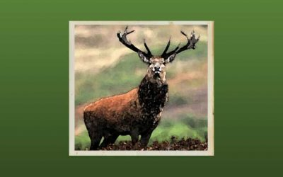 Thomas Finch (Part One): Caught Red-Handed with a Dead Deer and a Sprightly Greyhound